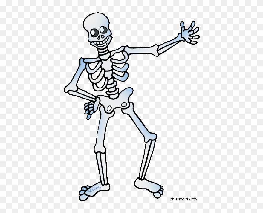 Human body clipart free graphic library library Metal Clipart Free Clipart Human Body - Skeleton Clipart - Png ... graphic library library