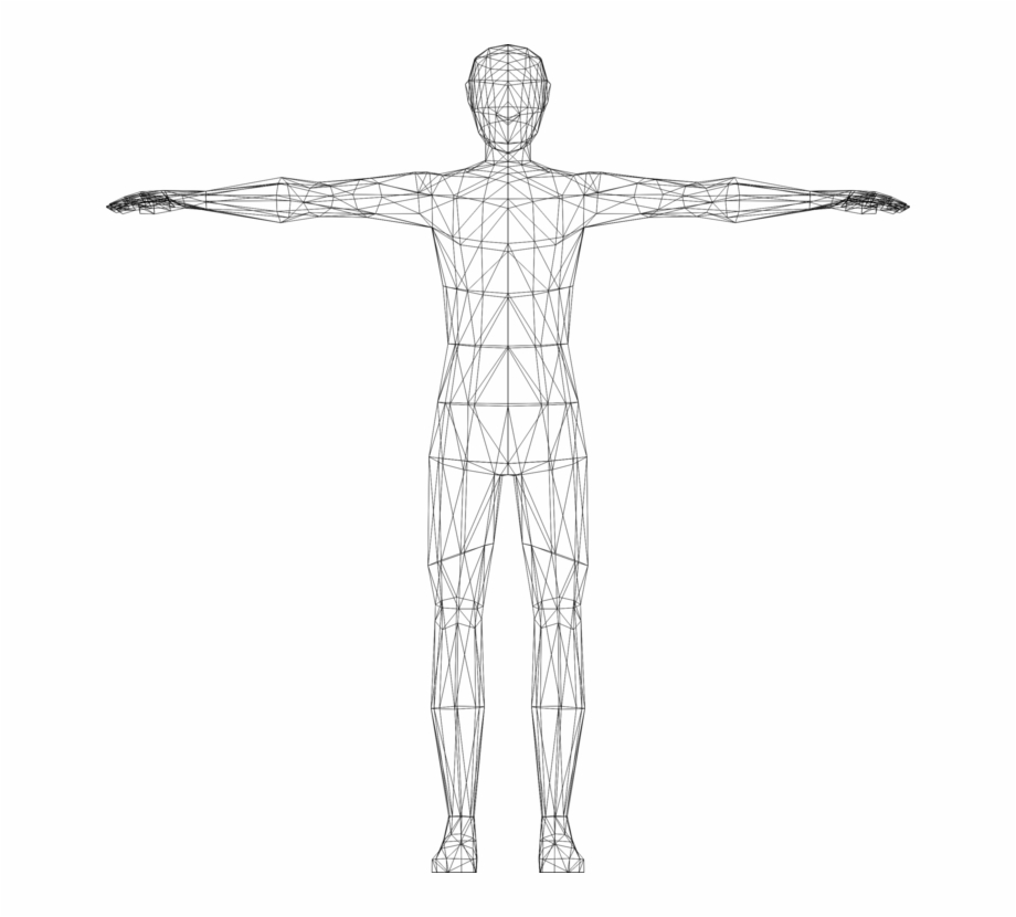 Human body model clipart clip black and white library Website Wireframe Wire-frame Model Human Body Computer - Transparent ... clip black and white library