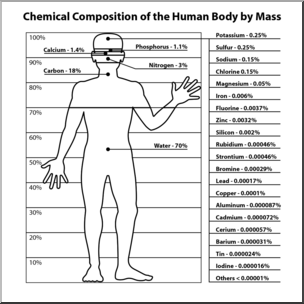 Human body with magnesium in it clipart png freeuse stock Clip Art: Human Body Chemical Composition B&W I abcteach.com | abcteach png freeuse stock