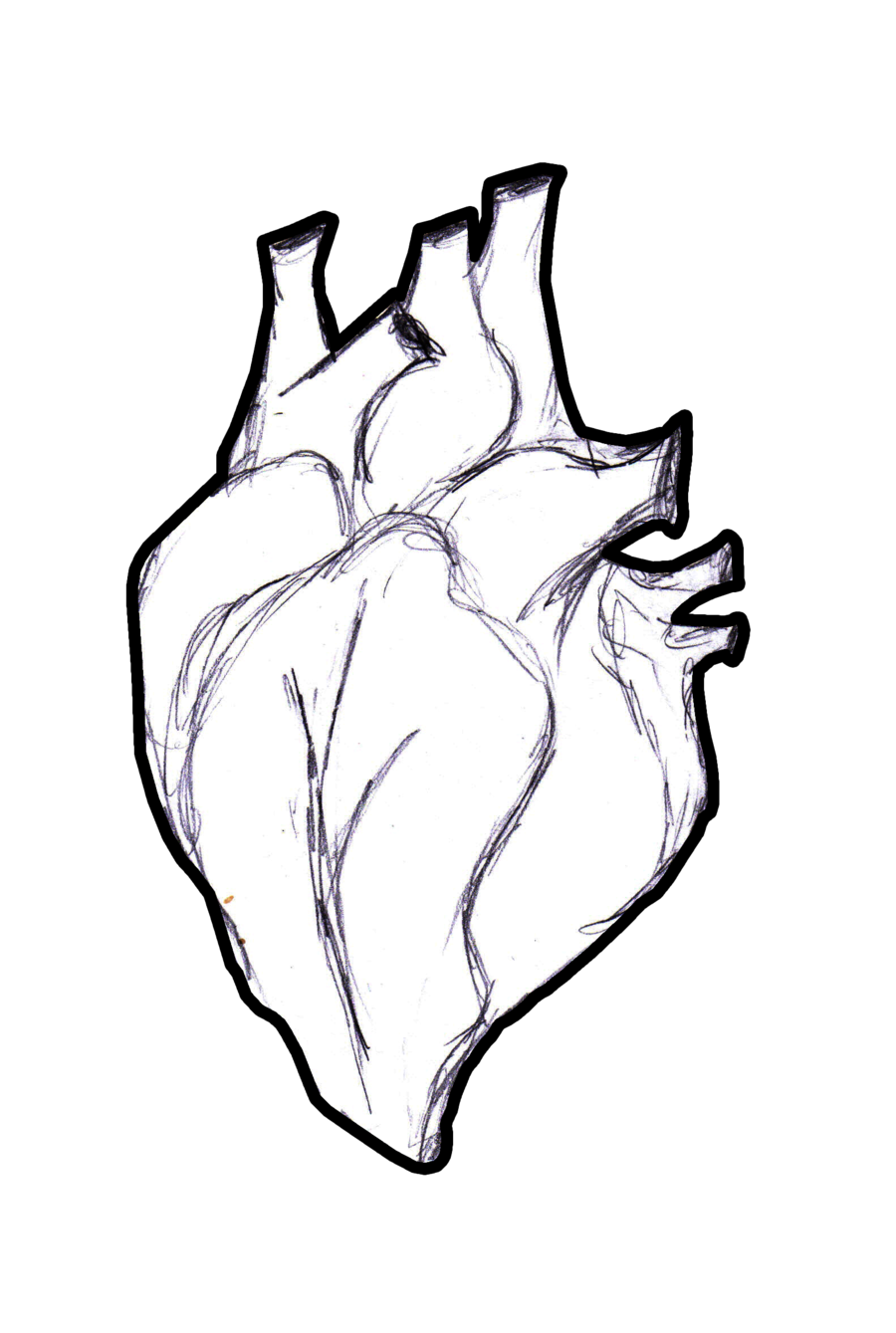 Human heart clipart black and white image black and white stock Human Heart Drawing Outline at GetDrawings.com   Free for personal ... image black and white stock