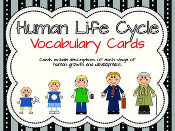 Human life cycle clipart clipart transparent library 10+ images about Life cycles on Pinterest | The frog, Life cycles ... clipart transparent library
