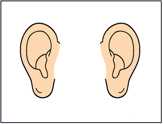 Humanears clipart clip art black and white library Free Image Of The Ear, Download Free Clip Art, Free Clip Art on ... clip art black and white library