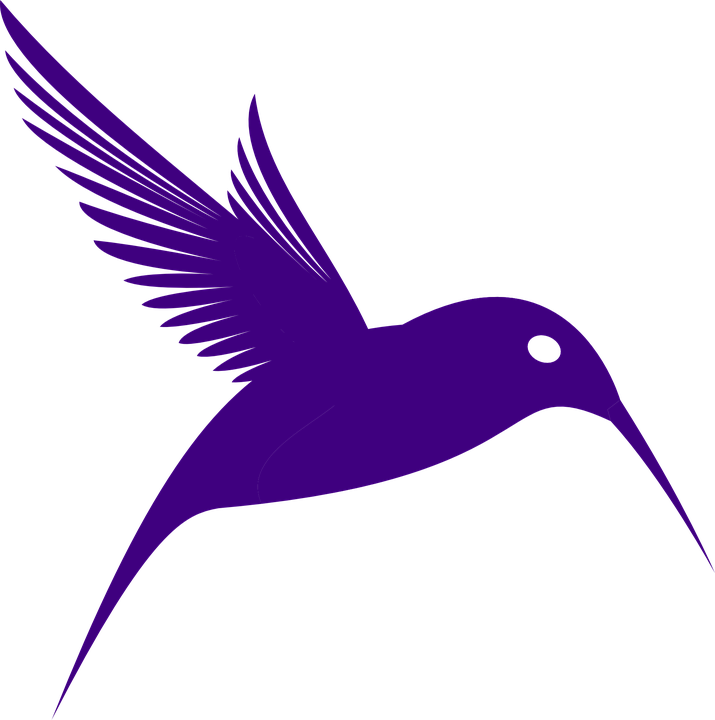 Hummingbird PNG Transparent Free Images | PNG Only svg free download