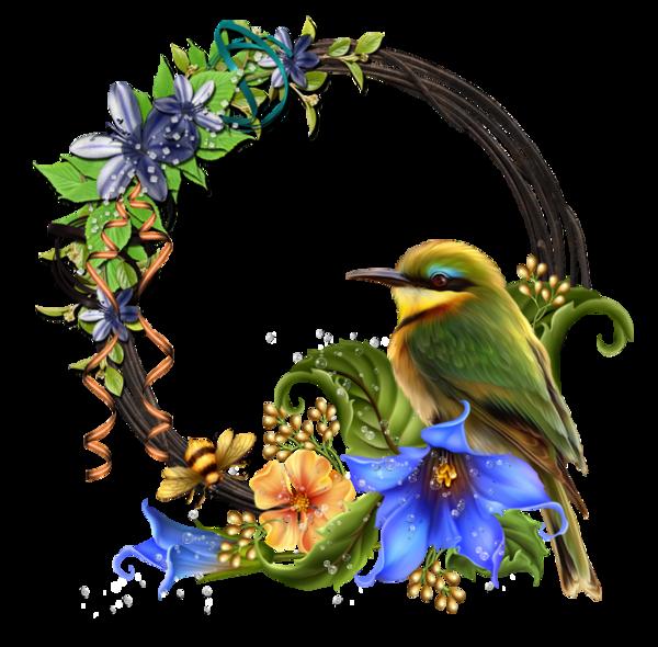 Humming bird flower clipart image library http://zezete2.centerblog.net/rub--cadres-et-bordures--29.html ... image library