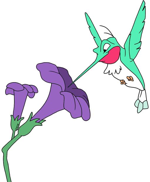 Humming bird flower clipart image free Flit & Meeko Clip Art | Disney Clip Art Galore image free