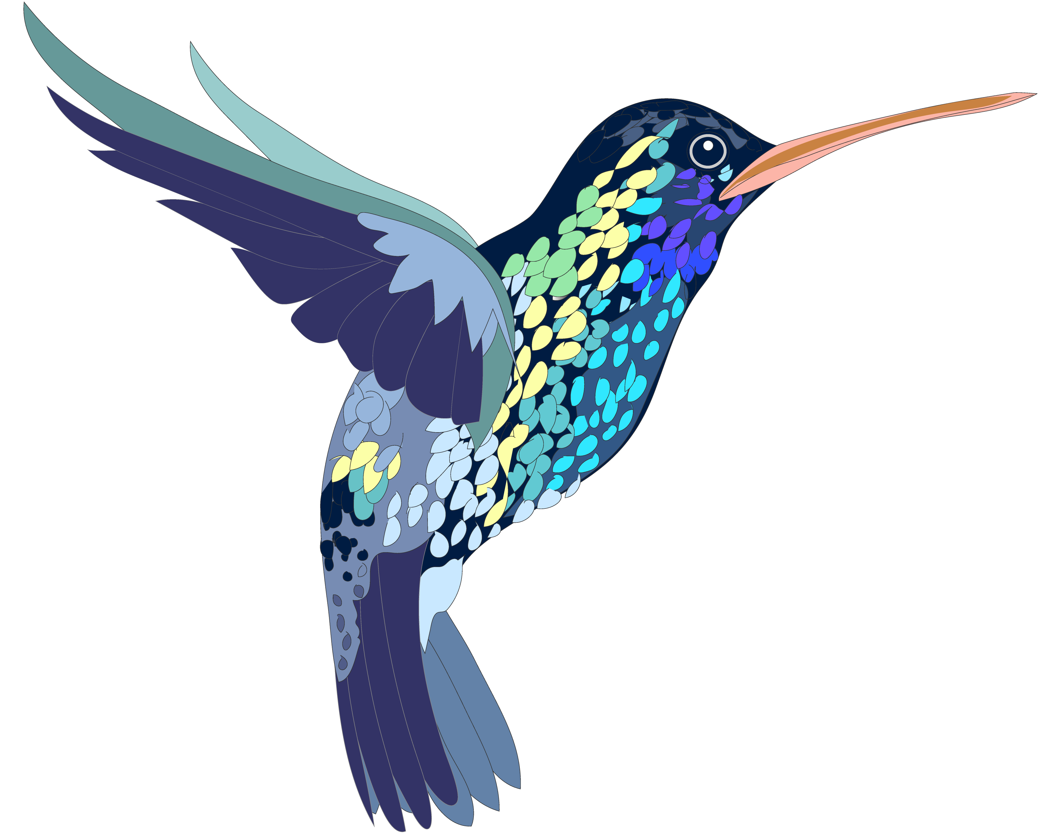 Hummingbird and flower clipart png royalty free Hummingbird clipart FREE for download on rpelm png royalty free