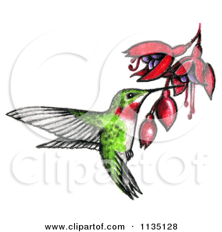 Hummingbirds and flowers clipart png royalty free library Royalty-Free (RF) Clipart of Humming Birds, Illustrations, Vector ... png royalty free library