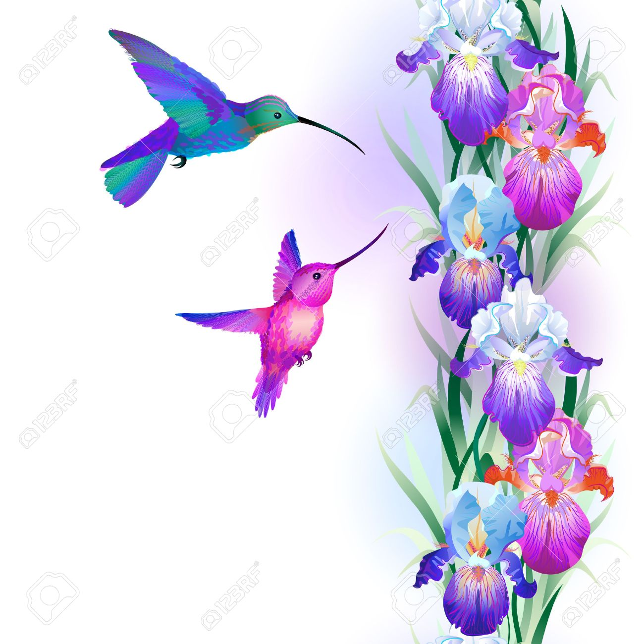 Hummingbirds and flowers clipart picture royalty free stock Hummingbird and flower clipart - ClipartFest picture royalty free stock