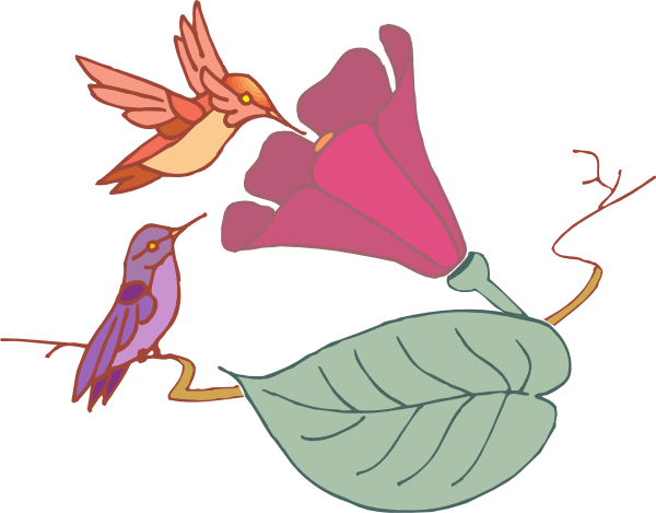 Hummingbirds and flowers clipart svg black and white library Hummingbirds And A Flower Clip Art at Clker.com - vector clip art ... svg black and white library