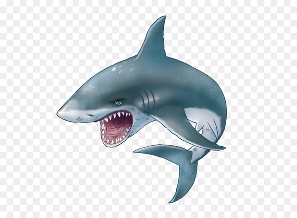 Hungry shark evolution clipart picture freeuse download Hungry Shark Evolution Great white shark Clip art - Shark PNG - Nohat picture freeuse download