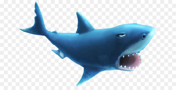 Hungry shark evolution clipart jpg black and white stock Hungry Shark Evolution Hungry Shark World Great white shark ... jpg black and white stock