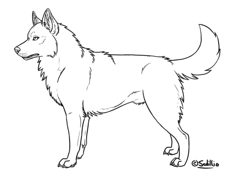 Husky dog clipart black and white graphic library stock 28+ Collection of Siberian Husky Black And White Drawing | High ... graphic library stock