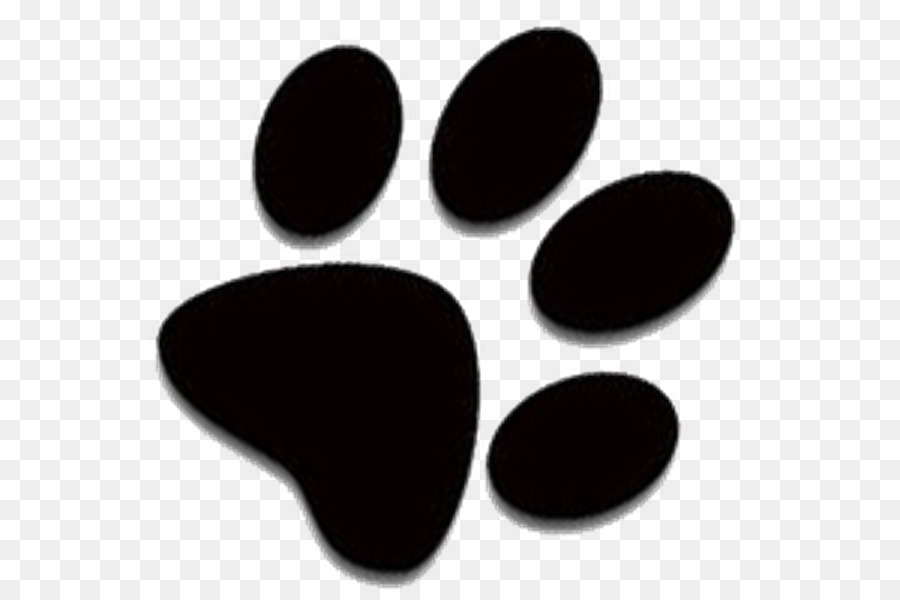 Husky paw clipart banner library download Dog And Cat png download - 600*600 - Free Transparent Siberian Husky ... banner library download
