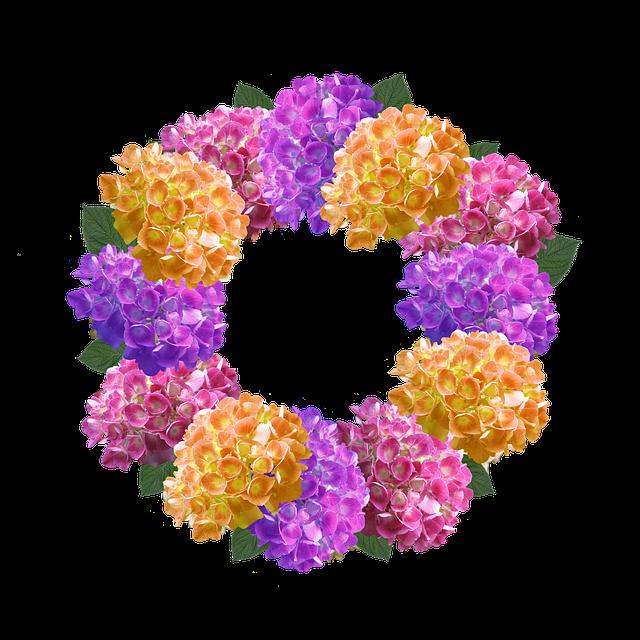 Hydrangea flower clipart image transparent library 19 Hydrangea clipart transparent background HUGE FREEBIE! Download ... image transparent library