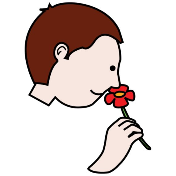 I can smell with my nose clipart