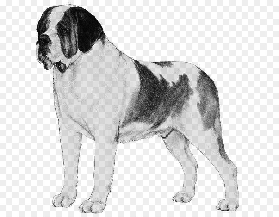 I miss you clipart with st bernard dog jpg transparent Dog Cartoon png download - 700*700 - Free Transparent St ... jpg transparent