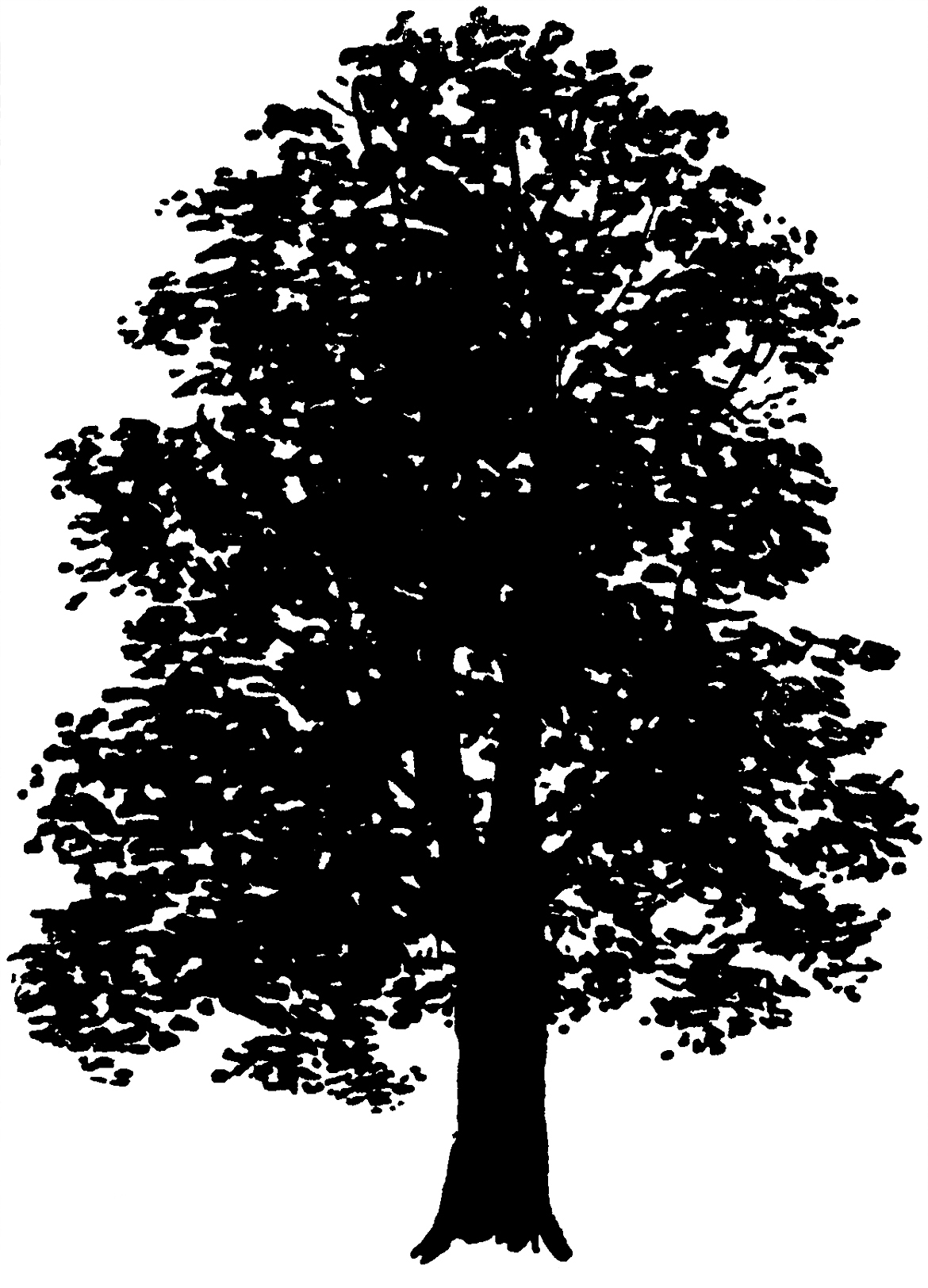 I tried it at home silhouette clipart svg royalty free 32 Tree Clipart - Tree Images Free! - The Graphics Fairy svg royalty free