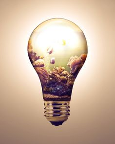 Ice cube with a light bulb inside clipart jpg freeuse 69 Best Light Bulb Drawing images in 2018   Light bulb ... jpg freeuse