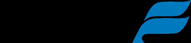 Icelandair logo clipart transparent stock Icelandair (1995)   Logos   Airline logo, Logos, Logo sticker transparent stock