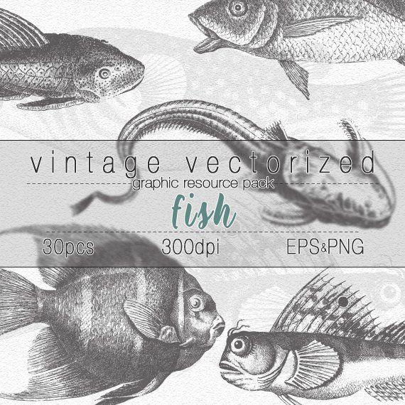 Ichthyology clipart jpg royalty free download Fish Clipart Fishing Illustration Digital Art Graphic Design ... jpg royalty free download