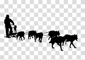 Iditarod trail clipart jpg transparent Sled Dog transparent background PNG cliparts free download | HiClipart jpg transparent
