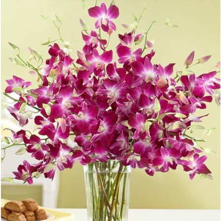 Image for flowers svg transparent library 50 Most Beautiful Flowers In The World svg transparent library