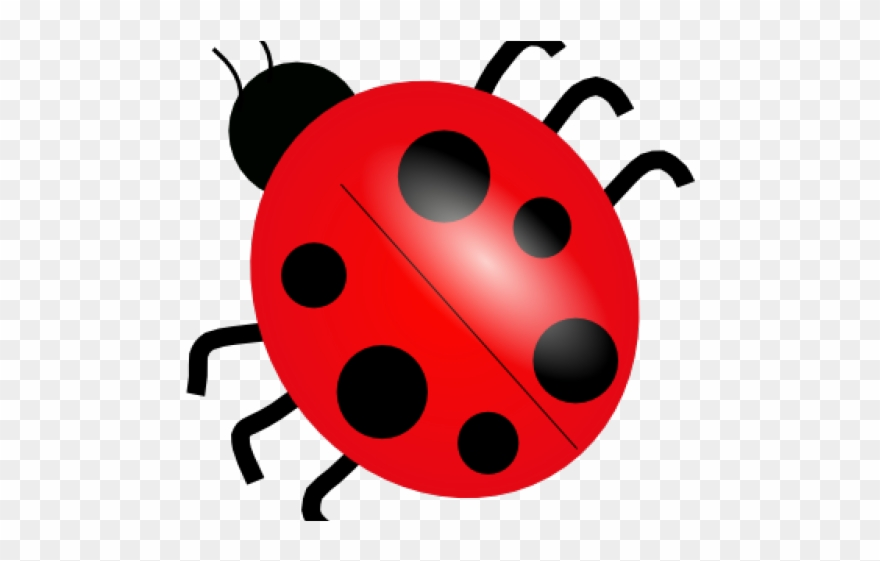 Imagenes de ladybug clipart black and white Ladybug Clipart Public Domain - Dibujo De Una Mariquita ... black and white