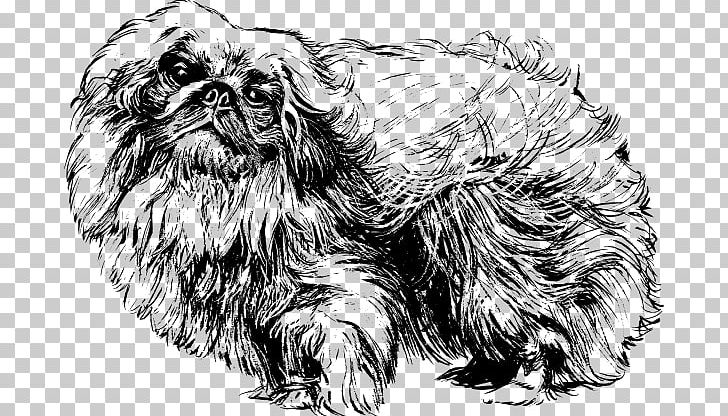 Images clipart black and white lhasa apso dog banner transparent stock Pekingese Shih Tzu Papillon Dog Pomeranian Lhasa Apso PNG, Clipart ... banner transparent stock