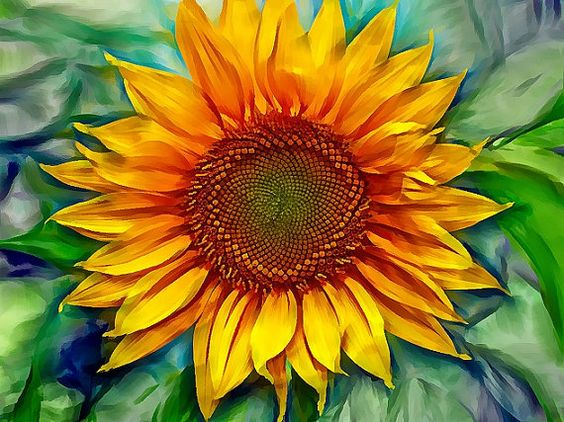 Images of big flowers picture royalty free stock Sunflower painting artwork geclee on canvas, floral modern art ... picture royalty free stock
