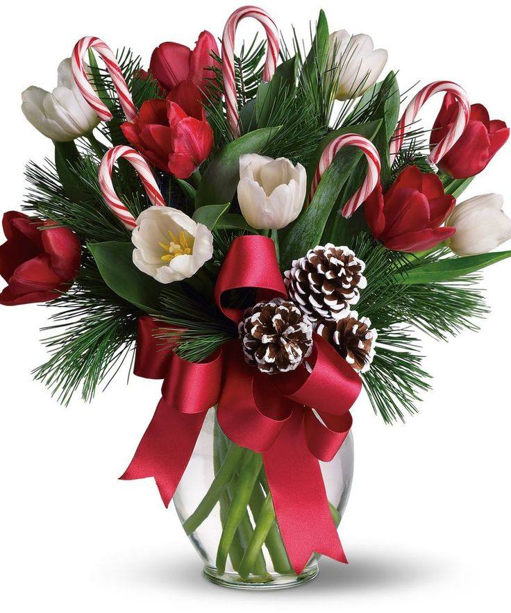 Images of christmas flowers clip art 17 best ideas about Christmas Flowers on Pinterest | Christmas ... clip art