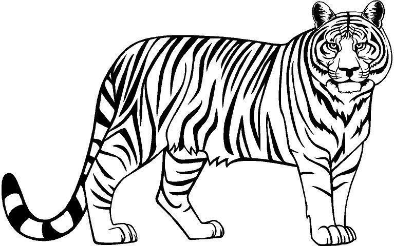 Images of tiger clipart black and white png royalty free Black and white tiger clipart 2 » Clipart Station png royalty free