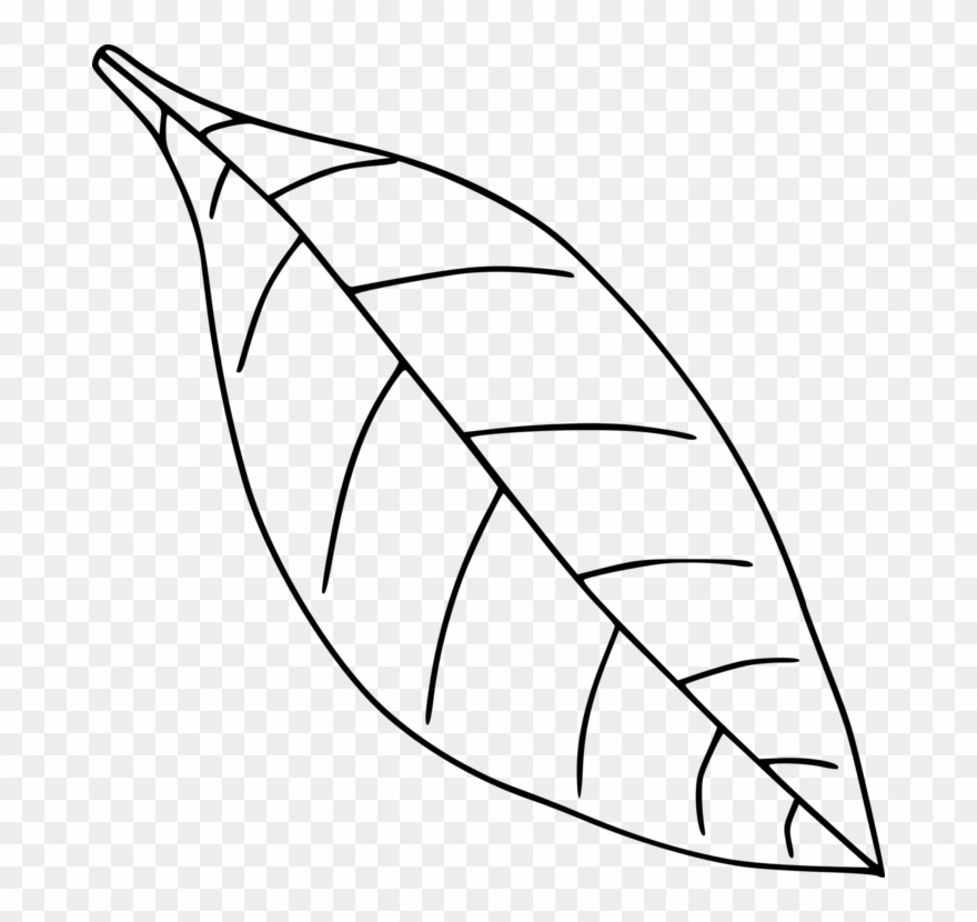 Images transparent black and white clipart leaves picture free stock All Photo Png Clipart - Clip Art Black And White Leaf Transparent ... picture free stock