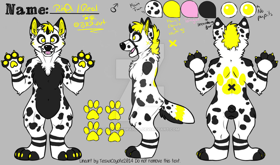 Imgur__om igkv0p4 clipart clip free download Fursuit reference sheet lineart tesxacoyote - 15 linearts for free ... clip free download