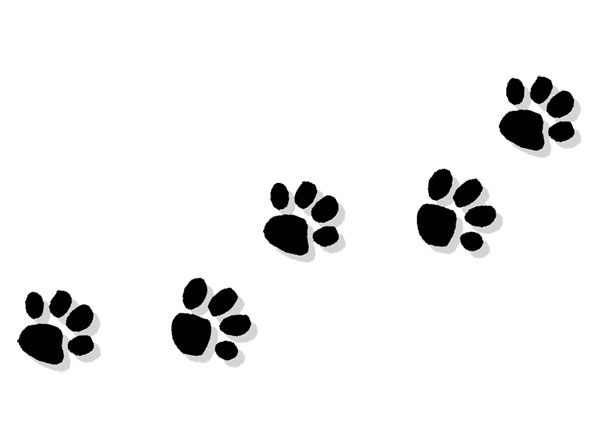 Img https i imgur com k2sl0hg clipart img picture royalty free download Paws clipart trail - 32 transparent clip arts, images and pictures ... picture royalty free download