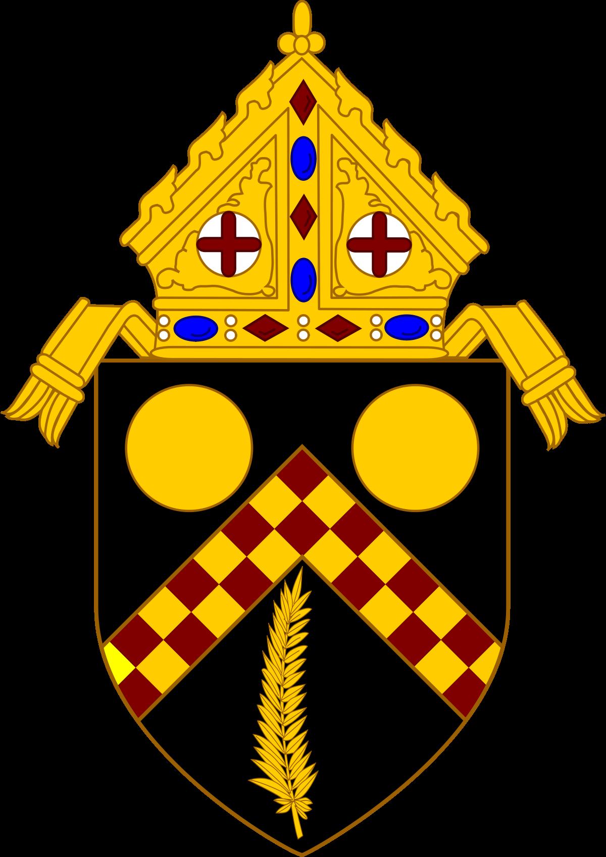 Roman Catholic Archdiocese of Brisbane - Wikipedia svg free
