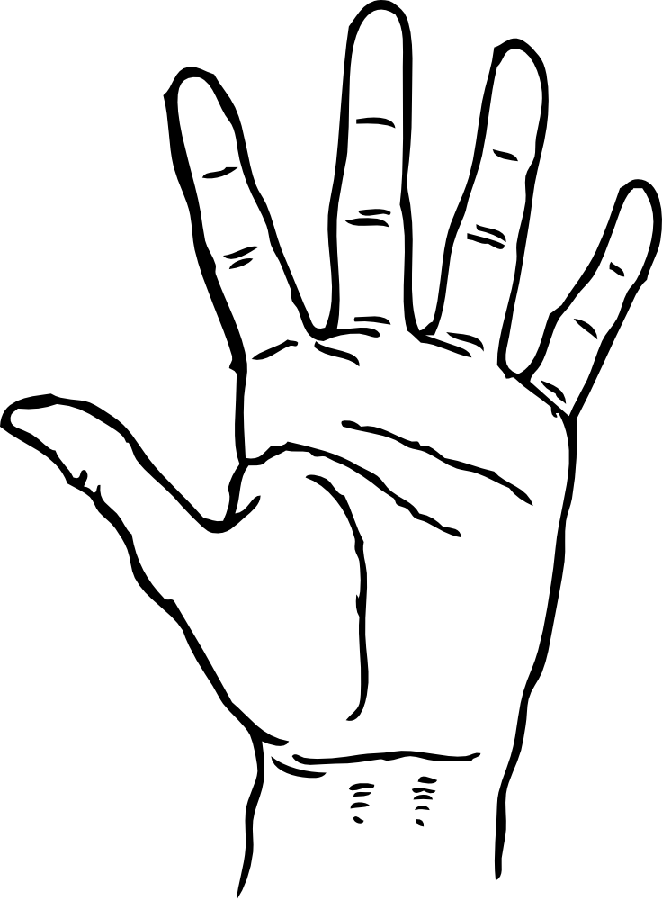 In the palm of your hand clipart picture transparent library Free Hand Line Art, Download Free Clip Art, Free Clip Art on Clipart ... picture transparent library