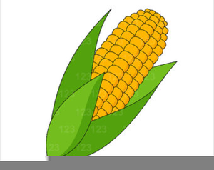Indian corn clipart clip art freeuse download Free Indian Corn Clipart | Free Images at Clker.com - vector clip ... clip art freeuse download