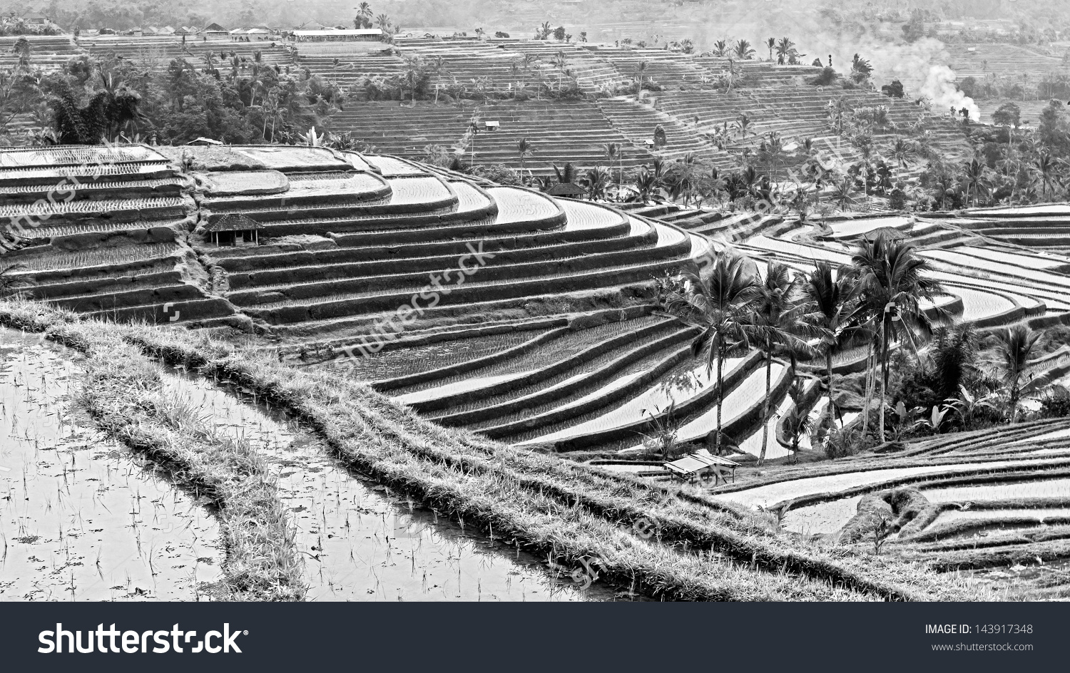Indonesia black and white clipart clip art transparent library Rice Terraces On Bali Island Indonesia Stock Photo 143917348 ... clip art transparent library