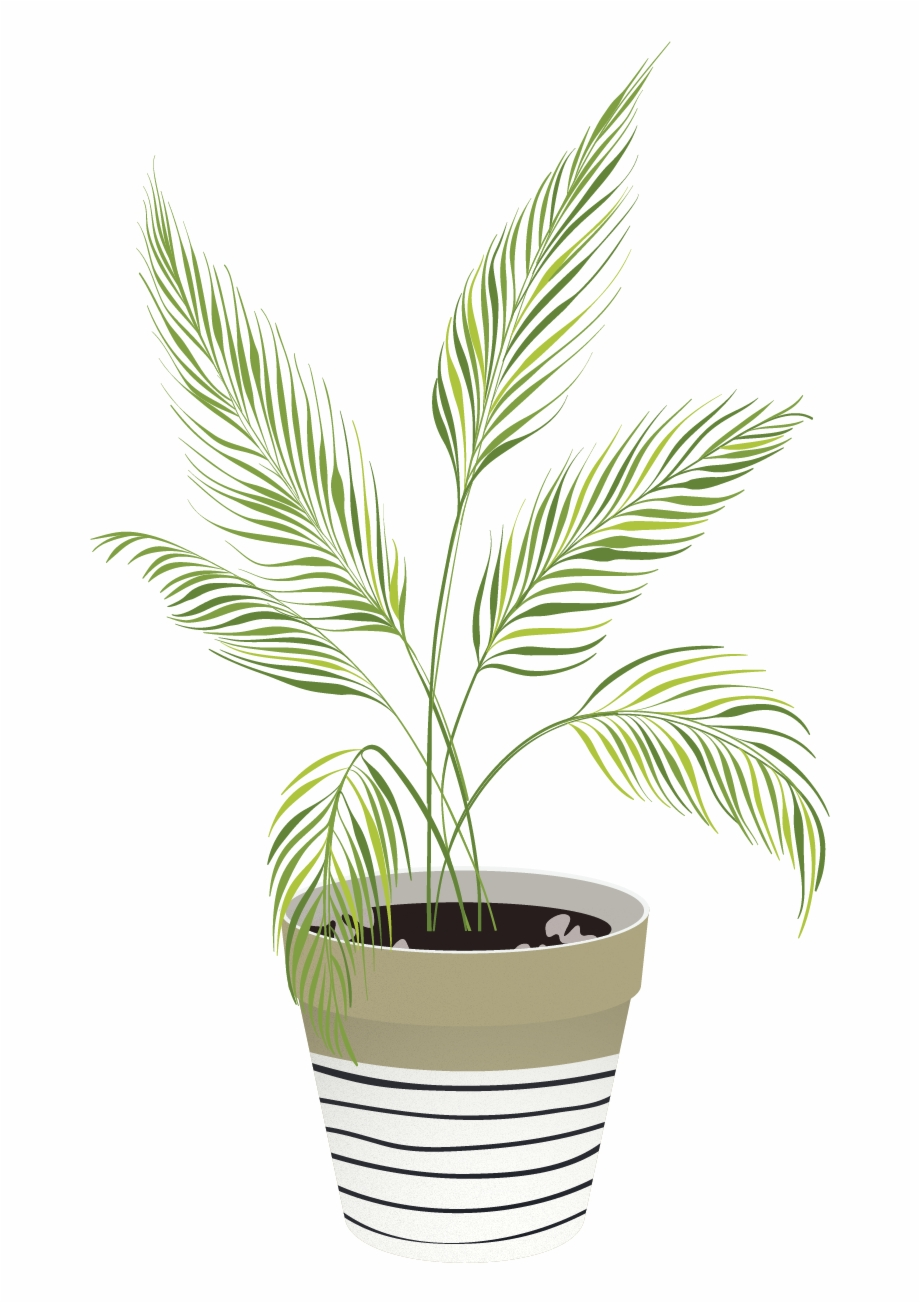 Indoor plant clipart png freeuse download Vector Indoor Plants - Houseplant Free PNG Images & Clipart Download ... png freeuse download
