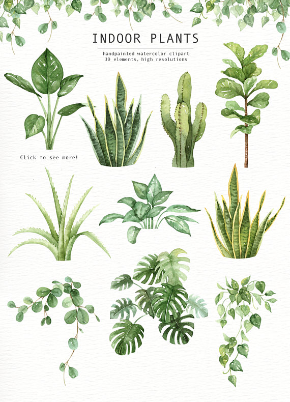 Indoor plant clipart clipart royalty free stock Indoor Plants Watercolor clipart, Watercolour Leaves, Watercolor ... clipart royalty free stock