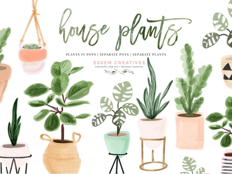 Indoor plant clipart vector Watercolor House Plant Clip Art by Graphics Collection on Dribbble vector