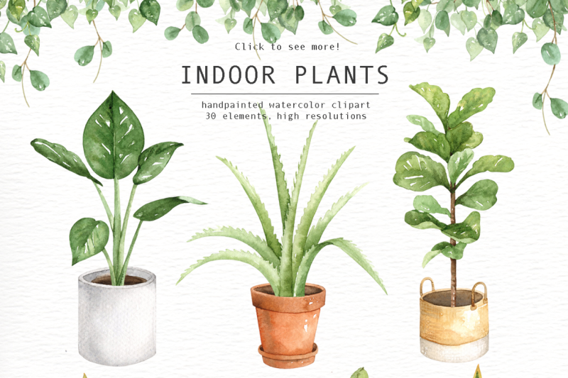 Indoor plant clipart vector transparent stock Indoor Plants Watercolor Clipart By everysunsun | TheHungryJPEG.com vector transparent stock