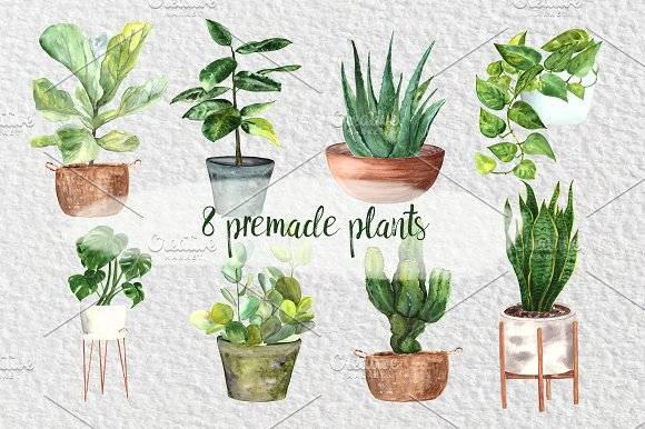 Indoor plant clipart clip royalty free Watercolor Indoor Plants Clipart Set clip royalty free