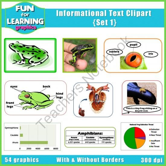 Informational text clipart clip black and white library Informational Text Features CLIPART - Set 1 from Fun for Learning on ... clip black and white library