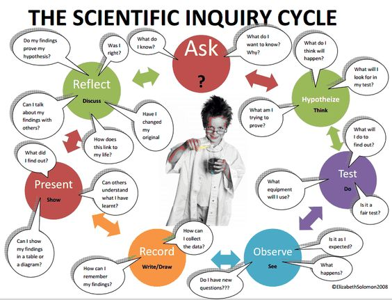 Inquiry cycle clipart png royalty free stock Scientific Inquiry Cycle   International Baccalaureate PYP and MYP ... png royalty free stock