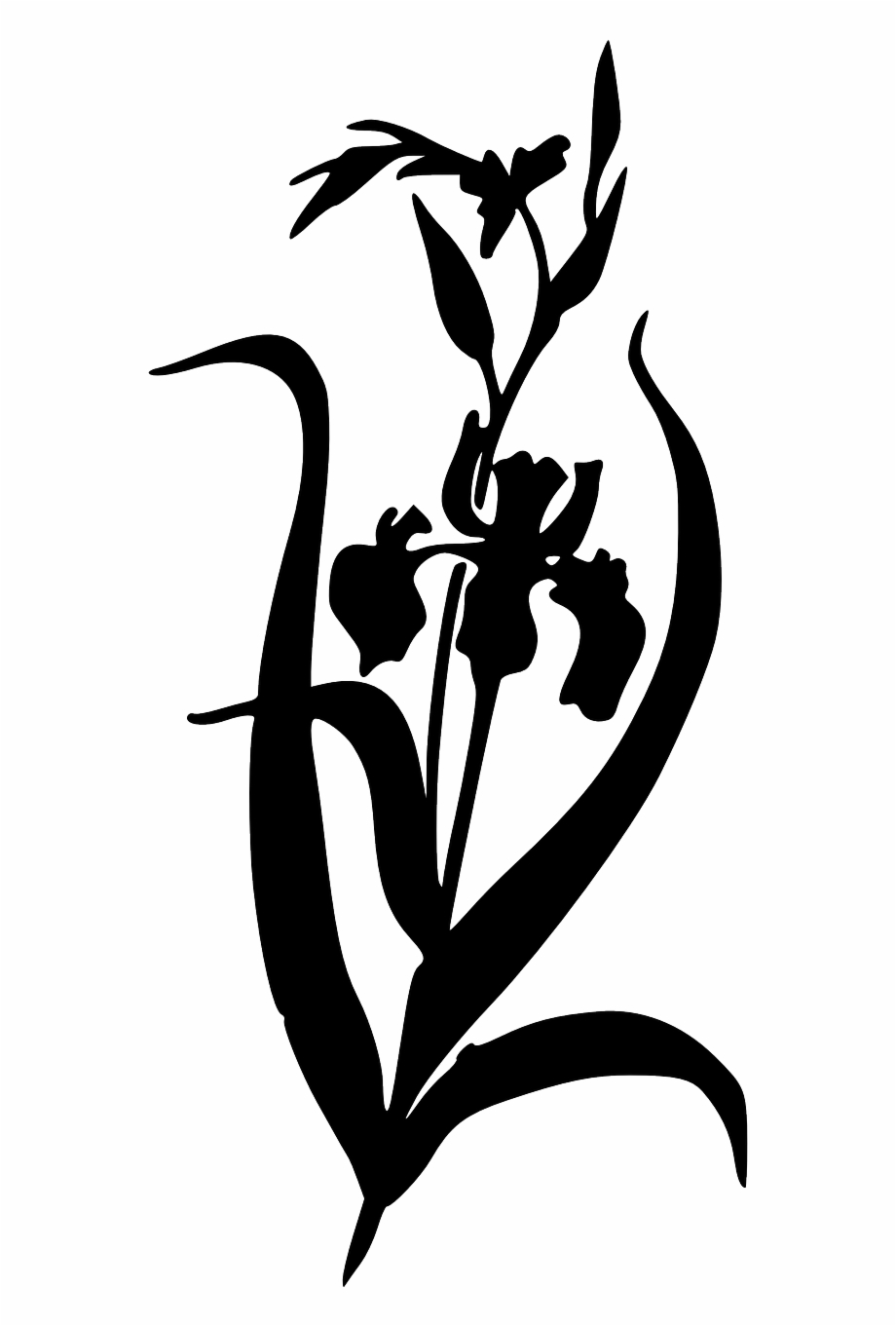 Iris clipart black and white banner transparent Silhouette Iris Plants Black Png Image - Iris Flower Clipart ... banner transparent