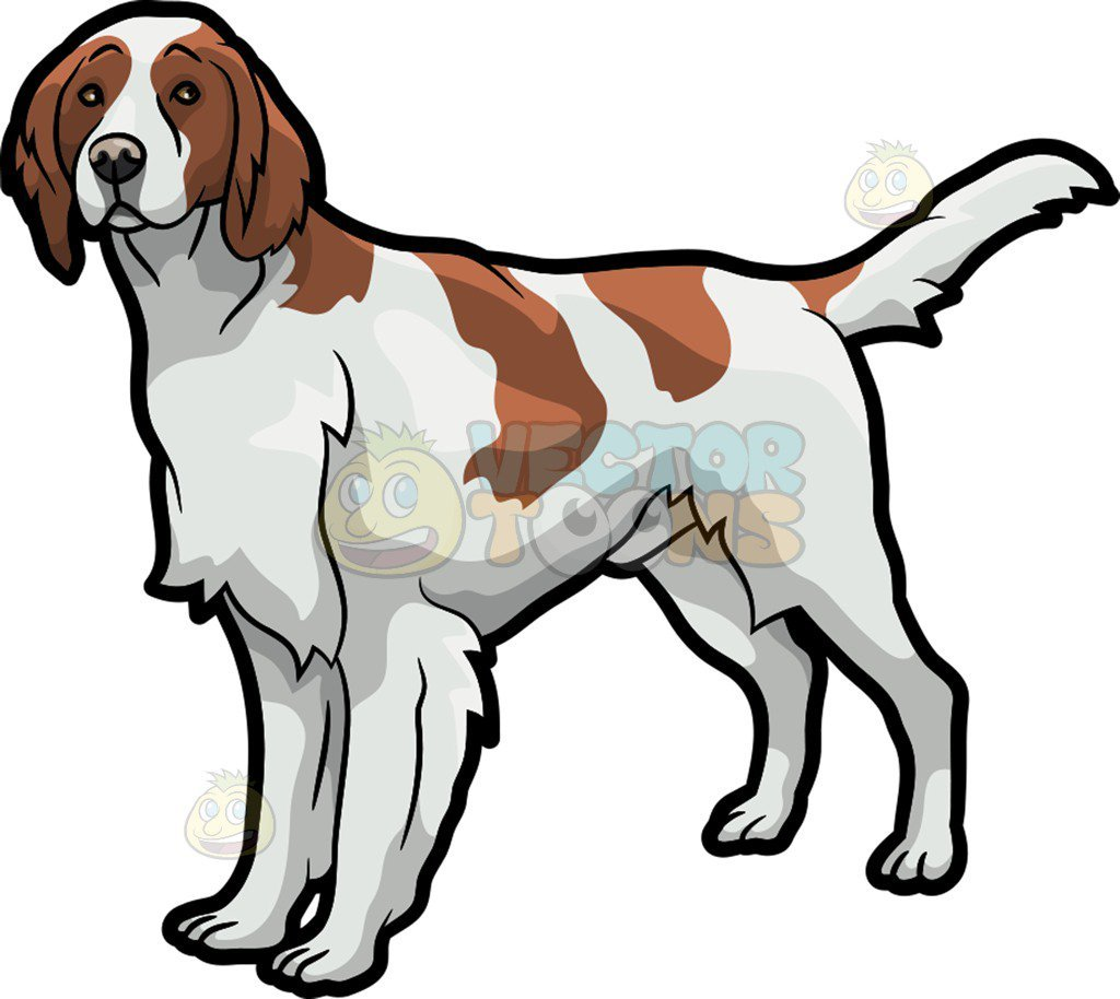 Irish setter clipart clipart black and white stock Irish setter clipart 8 » Clipart Portal clipart black and white stock