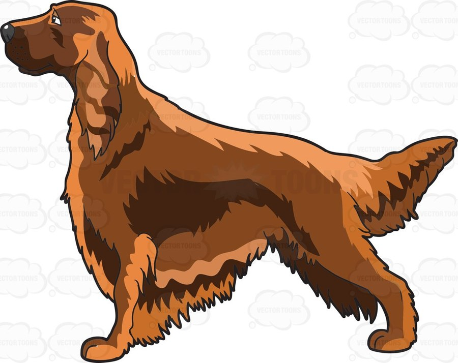 Irish setter clipart graphic Download Irish Setter clipart Irish Setter Dog breed English ... graphic