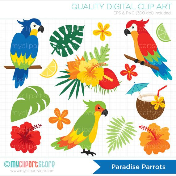 Island bird clipart banner black and white download Parrots Clipart, Tropical Birds, Palm Leaves, Beach, tropical plants ... banner black and white download
