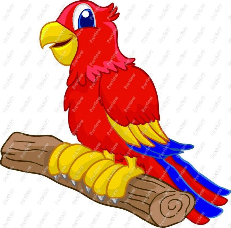 Clipart of a church with happy birds jpg library stock free parrot clip art | Cartoon Parrot Clip Art | Wimsey | Cartoon ... jpg library stock